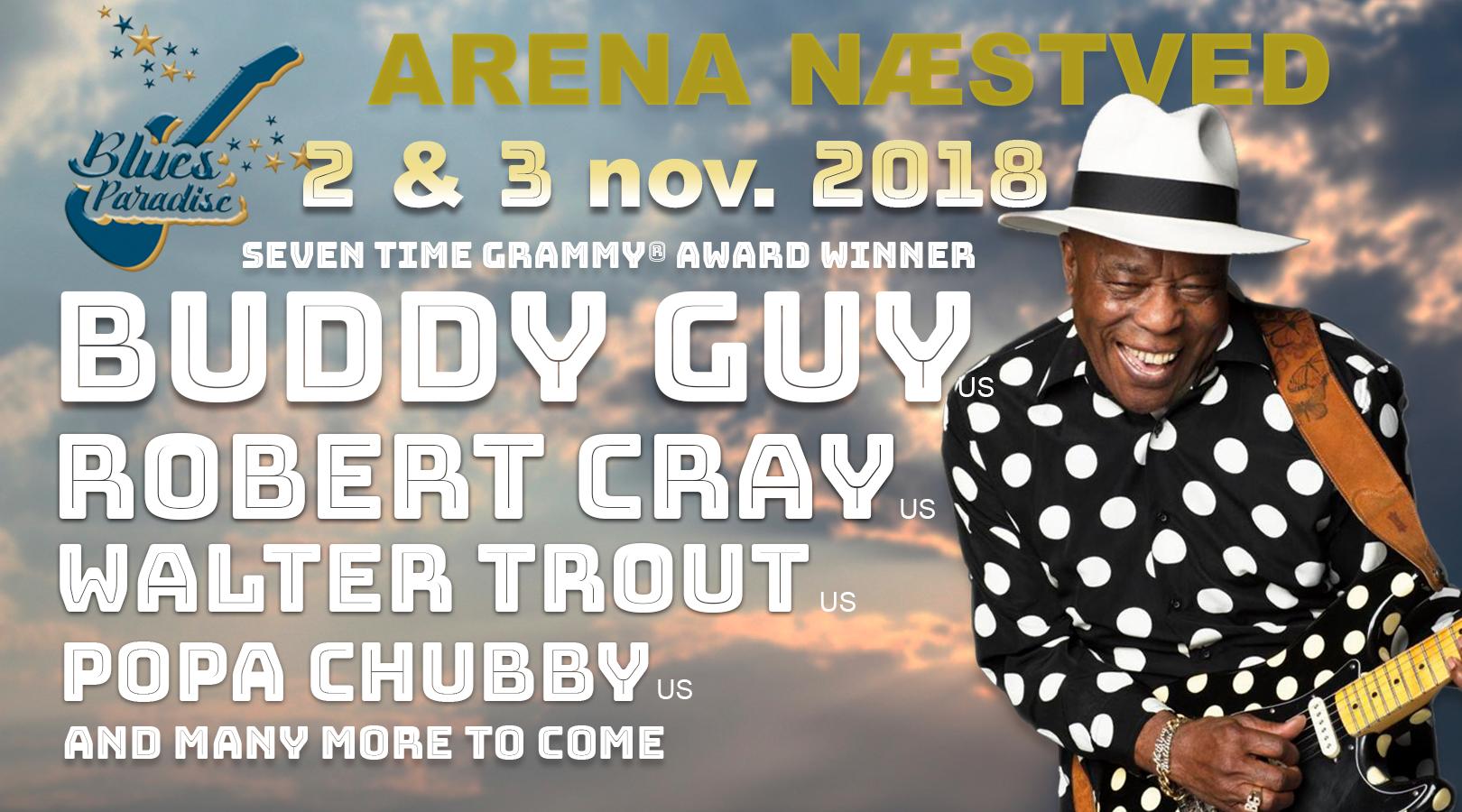 image of banner advertising a blues festival called Blues Paradise at Arena Naestved, near Copenhagen, Denmark on November 2nd & 3rd 2018