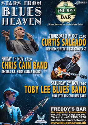 image of poster for blues heaven concerts at freddy's bar 2019